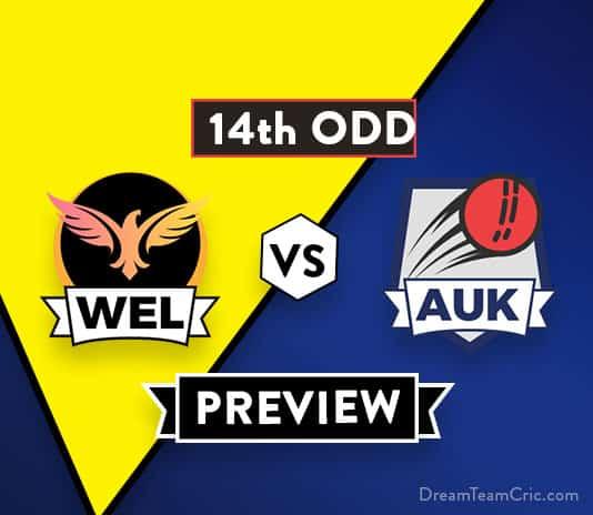 WEL vs AUK 14th ODD Dream11 Team Prediction: Preview| Top Teams Battle